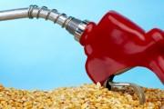 Biocombustibles en recuperación