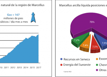graf masrcellus